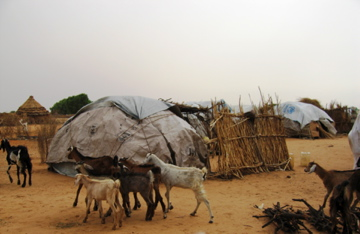 View of the outskirts of Gereida IDP camp, South Darfur, Sudan