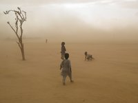 Boys fleeing violence along the border of Darfur and Chad as a sandstorm approaches
