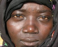 Chadian woman displaced by violence