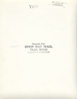 Edwin Way Teale