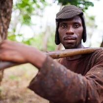 Firestone Plantation (Rubber & Latex), Liberia