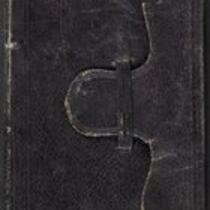 D. Alonzo Smith diary