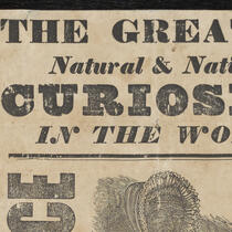 Advertisements - P.T. Barnum Research Collection, Bridgeport History Center